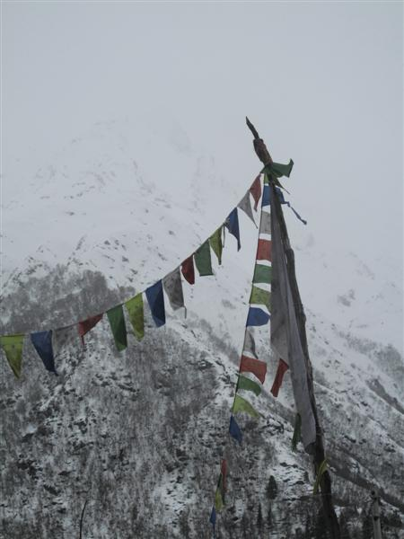 Tibetan Prayer flags Chitkul