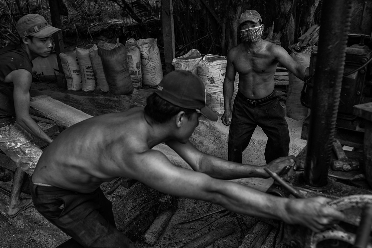 Workers in a small timber yard