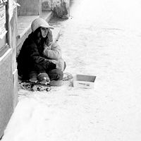 begging regardless of snow II